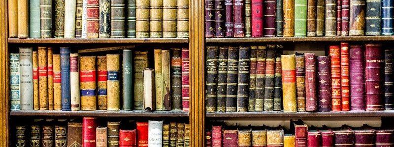 Bibliothèque à Maillet